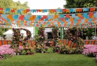 The RHS Hampton Court flower show