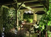 Garden lit at night