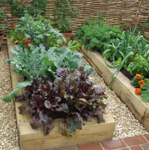 Wooden raised vegetable bed