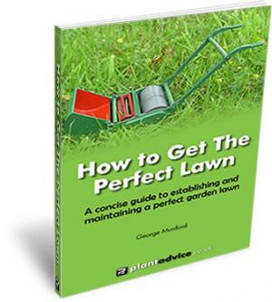 eBook - How to get the Perfect Lawn!