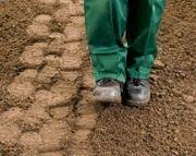 Stamping down soil